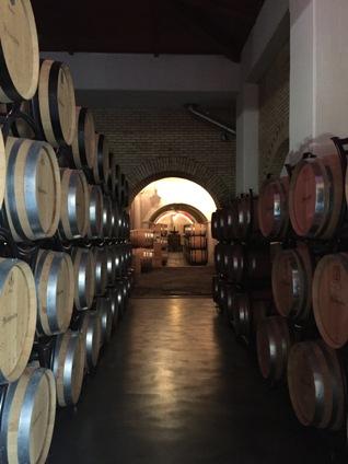 mastro_cellar